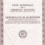 Certificato genealogico, comunemente chiamato Pedigree