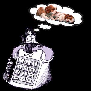 Donna seduta su un enorme telefono pensa in quale allevamento Cavalier King prenderà il suo cucciolo