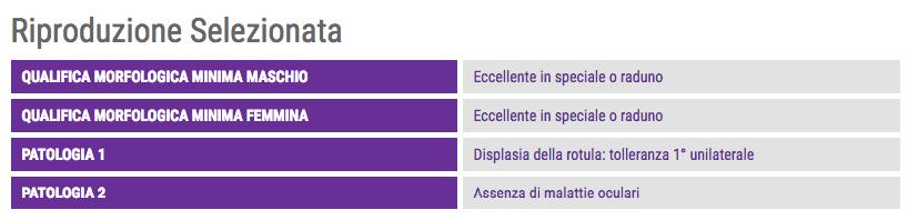 immagine dal sito ENCI per le qualifiche ed esenzioni da malattie genetiche nella riproduzione selezionata del Cavalier King