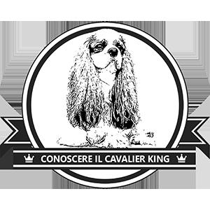 Vi presento il Cavalier King Charles Spaniel