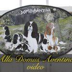 Alla Domus Aventina